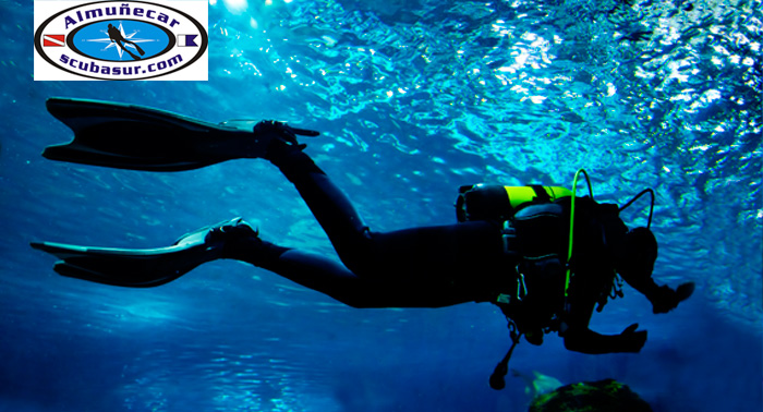 Bautizo de Buceo o 2 Inmersiones con salida en barco + Fotos + Diploma, zona Almuñécar.