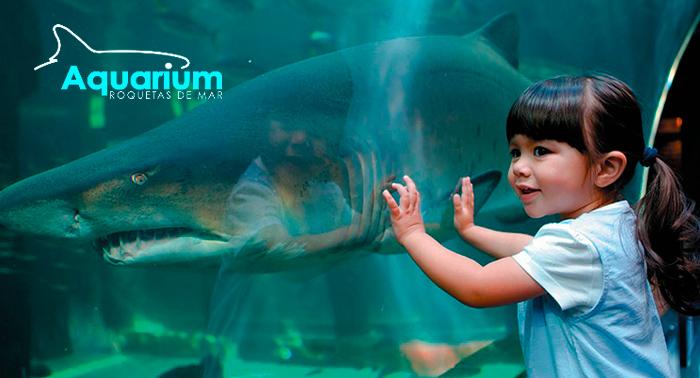 Diversión para toda la familia descubriendo el fondo marino en el Aquarium de Roquetas
