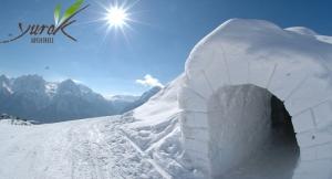 Construcción de Iglús + Raquetas de Nieve ¡Disfruta de Sierra Nevada de una forma diferente!