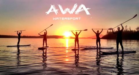 Curso de paddle surf o Alquiler de una tabla por horas ¡a navegar por las aguas!