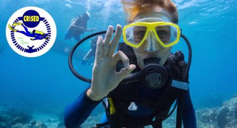 ¡Descubre el fondo del mar! Bautismo de Buceo para 1, 2 o 4 personas