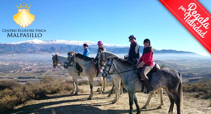 Esta Navidad disfruta de una magnífica ruta a Caballo por sólo 7.50€ ¡¡Una experiencia única!!