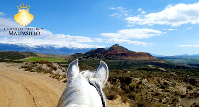 Disfruta de una magnífica ruta a Caballo por sólo 7.50€ ¡¡Una experiencia única!!