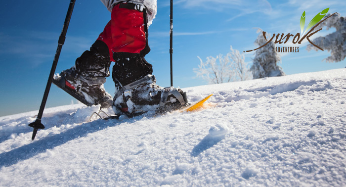 Construcción de Iglús + Raquetas de Nieve ¡Diviértete este invierno de una forma diferente!