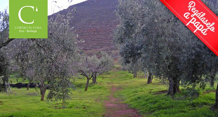Visita la Finca e instalaciones + Cata de Vinos + Degustación en Bodega Cortijo El Cura