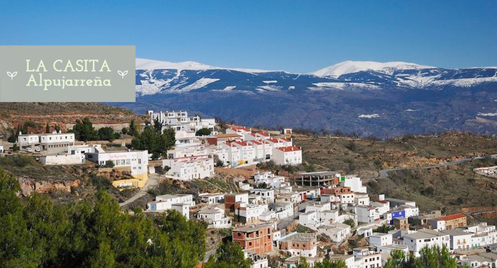Escapada en pareja o familiar a La Alpujarra:2 Noches de Alojamiento + Desayuno +Late Chek-out