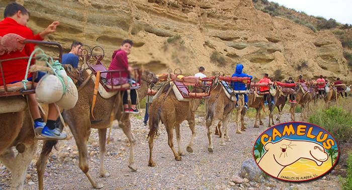 Pasea a camello con tus hijos y diviértete en La Granja... ¡un plan para niños y papás!