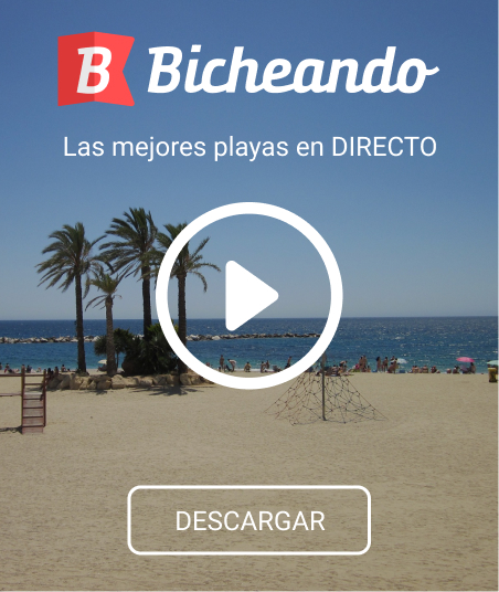 Descubre la App Bicheando Almería