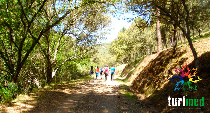 Descubre el Parque Natural de Despeñaperros con esta Ruta de Senderismo desde sólo 5€