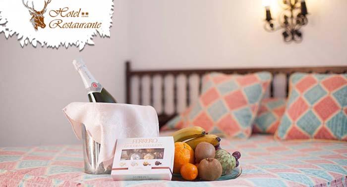1 o 2 noches de alojamiento Media Pensión a elegir Almuerzo o Cena para 2 personas desde 49€