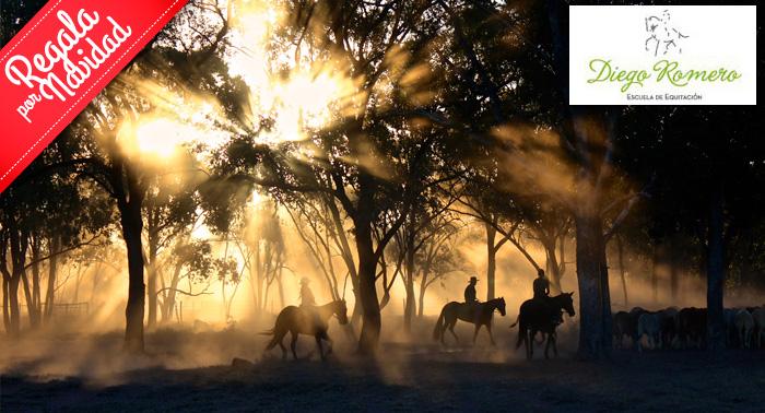 Clase de Equitación Personalizada