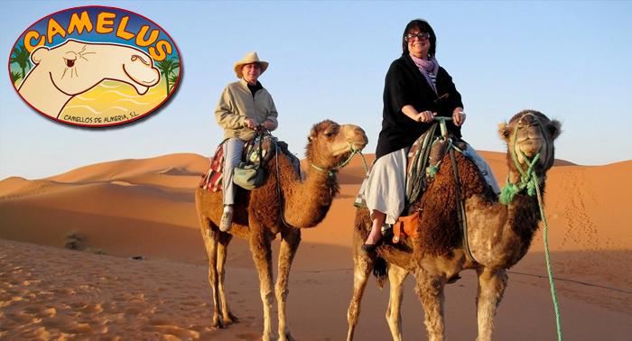 ¡La Búsqueda del Tesoro de los Camellos! Desayuno, visita a la granja, paseo a camello...