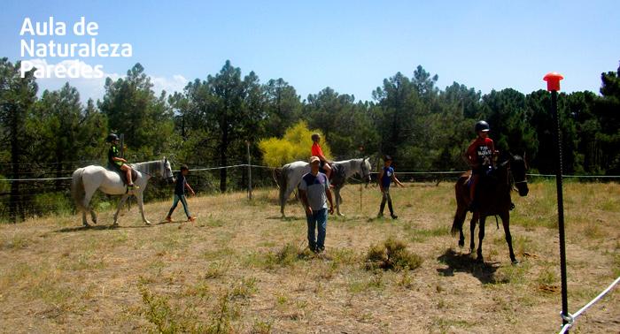 Campamento de Verano: Inglés en la Naturaleza para niños hasta 16 años ¡Y aprende disfrutando!