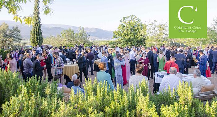 Visita la Bodega, Finca y Museo + Cata de Vinos + Botella de regalo en Bodega Cortijo El Cura