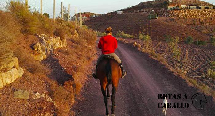 ¡Regala una experiencia única difícil de olvidar: Disfruta de una increíble Ruta a Caballo!