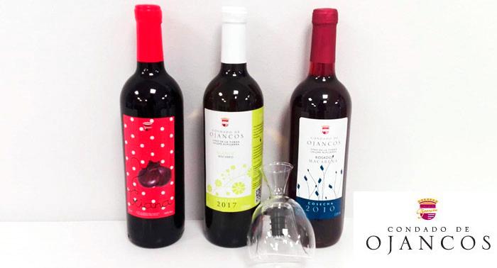 Especial para Papá: Pack de 3 Botellas de Vino con opción Decantador + Tarjeta Día del Padre